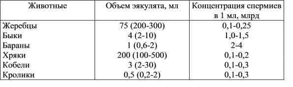 devushki-v-losinah-v-chernih
